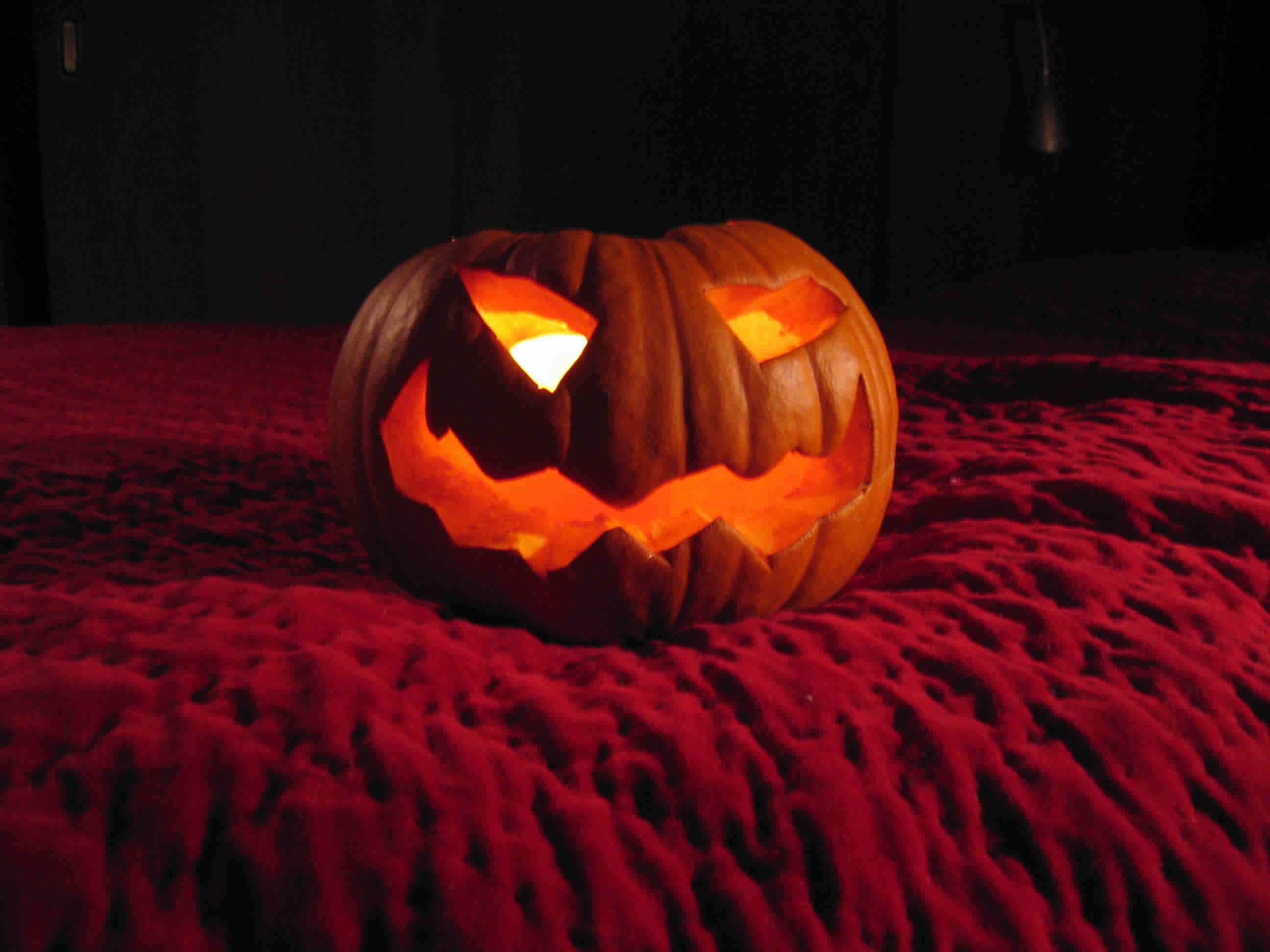 bolineas-pumpkin-2.jpg
